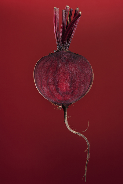 Beetroot by Adam Gasson