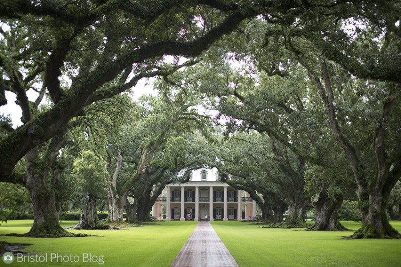 Oak Alley plantation in Louisiana - Photo by Adam Gasson / adamgasson.com